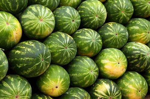tips to buy ripe watermelon in hindi