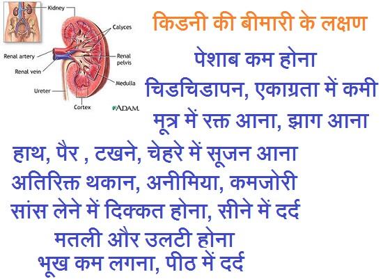 Kidney ki bimari ke lakshan