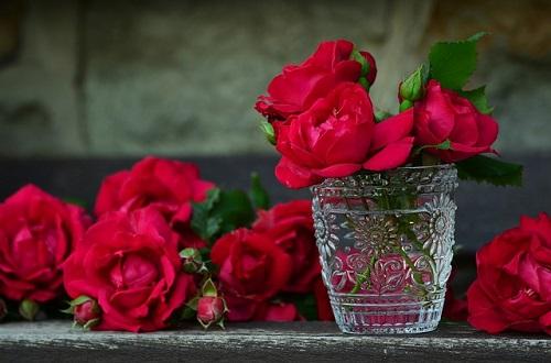 गुलाब-की-महक-का-प्रयोग